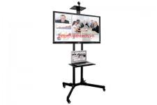 Giá treo TV di động DK1500 (32-65 inch)